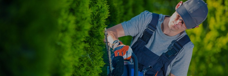 Quality that is guaranteed Your lawn and landscape the way that it should be