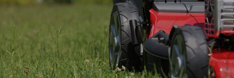Exceptional Lawn Care The grass is always greener on your side of the fence